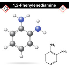 ortho phenylenediamine chemical structure vector image