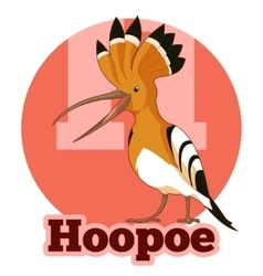 ABC Cartoon Hoopoe vector