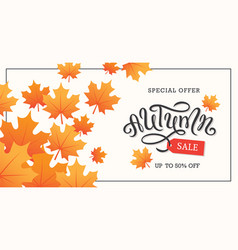 autumn sale background or banner design vector image