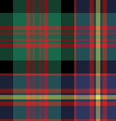cameron of erracht tartan seamless pattern fabric vector image