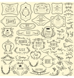 Collection of floral design elements and frames vector image