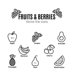 fruit and berries icon set vegan natural bio vector image