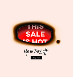 hot sale banner special offer big sale discount vector image