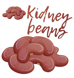 kidney beans icon cartoon vector image