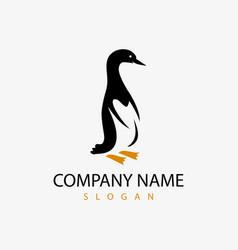 penguin logo vector image