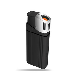 realistic black lighters vector image