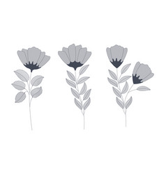Set of monochrome flowers vector