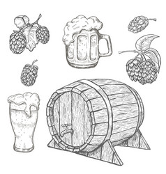 sketches of hop plant wood barrel and beer mugs vector image