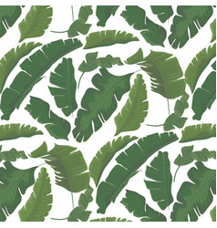 summer tropical palm leaf paradise pattern exotic vector image