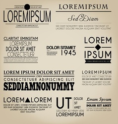 Typography Label Design Vintage Style vector