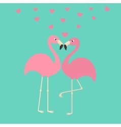 Two pink flamingo couple in love hearts exotic vector
