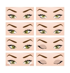 Exercises for eyes vector image vector image