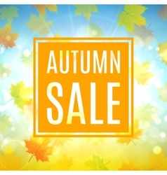 Autumn sale banner with maple leaves vector