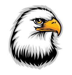 hawk eagle head usa logo mascot 06 vector image