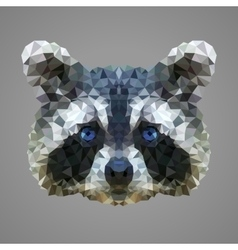 Raccoon low poly portrait vector image