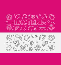 Set of 2 bacteria outline banners vector