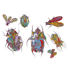 Set of ethnic insects vector