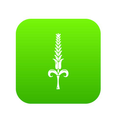 Shaky wheat icon green vector