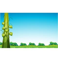 Beanstalk in field vector image vector image