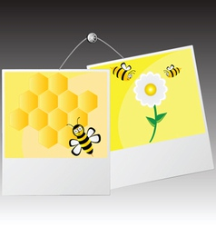 photo frame with cute bee vector image