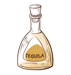 doodle tequila bottle with cap full alcohol vector image