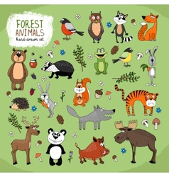 Forest Animals hand-drawn vector image