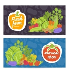 Fresh farm food horizontal flyers set vector image