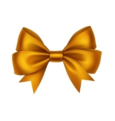 Golden Satin Gift Bow Isolated on White vector image