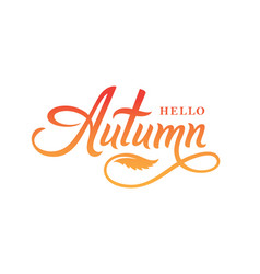 hello autumn calligraphy lettering vector image
