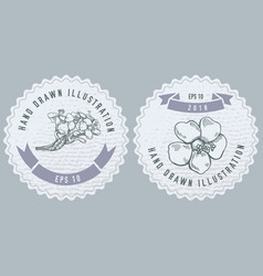 monochrome labels design with of vector image