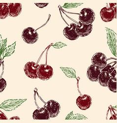 Pattern ripe cherries vector