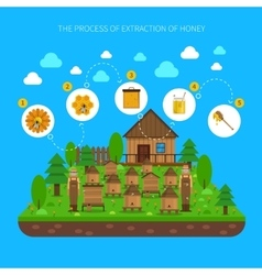Process Of Honey Extraction Concept vector