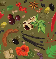 seamless background with spices vector image