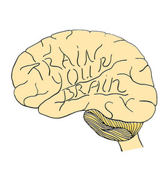 train your brain hand drawn vector image