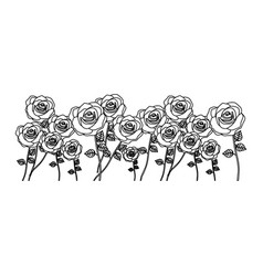 Silhouette bunch roses with stem and leaves floral vector