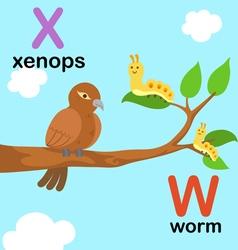 Alphabet w x vector