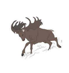 deer lies vector image