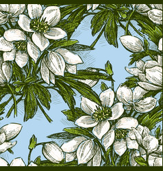 Pattern of the snowdrops bunches vector