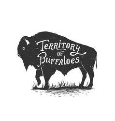 Territory of buffaloes vector