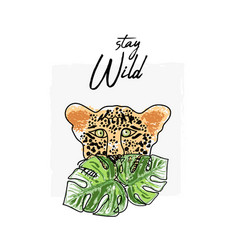 wild feline tropical hand drawn leopard character vector image