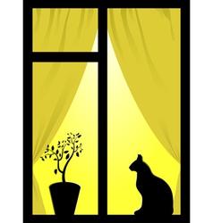 cat in the window vector image