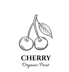 hand drawn cherry icon vector image