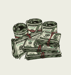 Rolls and stacks dollar banknotes vector