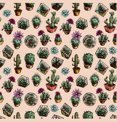 seamless pattern with succulents and cactus vector image