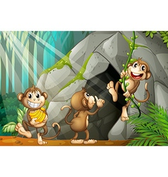 Three monkeys living in the cave vector