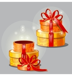Gift box on a gray background open and closed vector image vector image