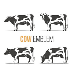 set of a stylish spotted holstein cows vector image