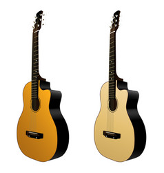 isolated classical acoustic guitars music vector image vector image
