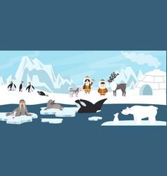 arctic landscape white polar bear antarctica vector image