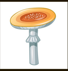 Cartoon contour mushroom isolated on white vector